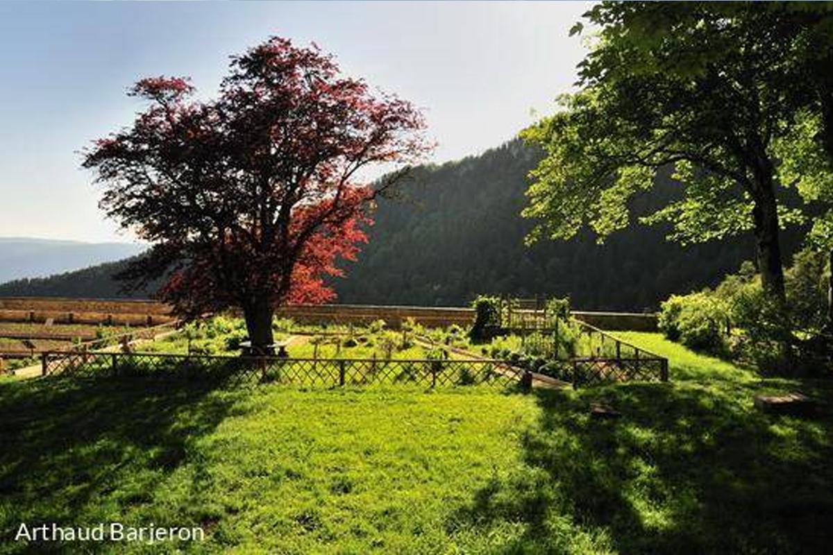 L'ancienne Chartreuse d'Arvières à Lochieu
