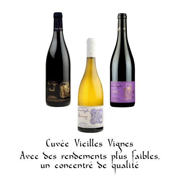 Cuvée vieilles vignes : avec des rendements plus faibles, un concentré de qualité