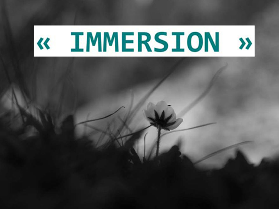 Immersion : exposition de photos de Alain Girard