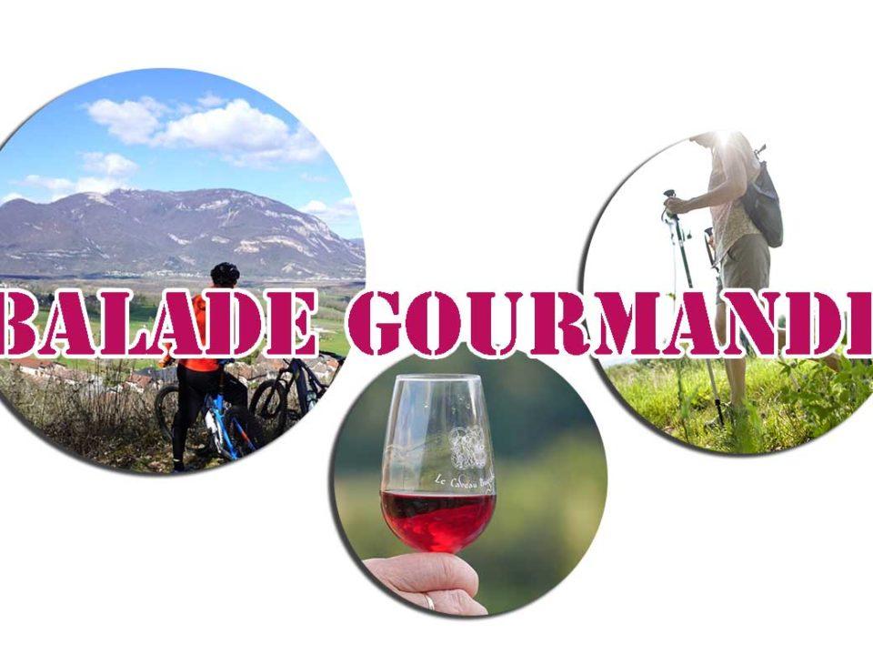 Balade gourmande dans le vignoble
